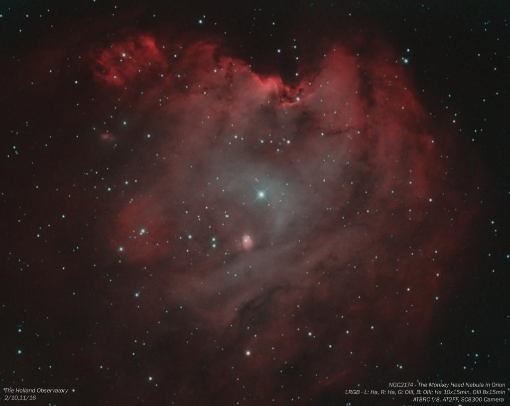 NGC2174 - Monkey Head Nebula in Orion