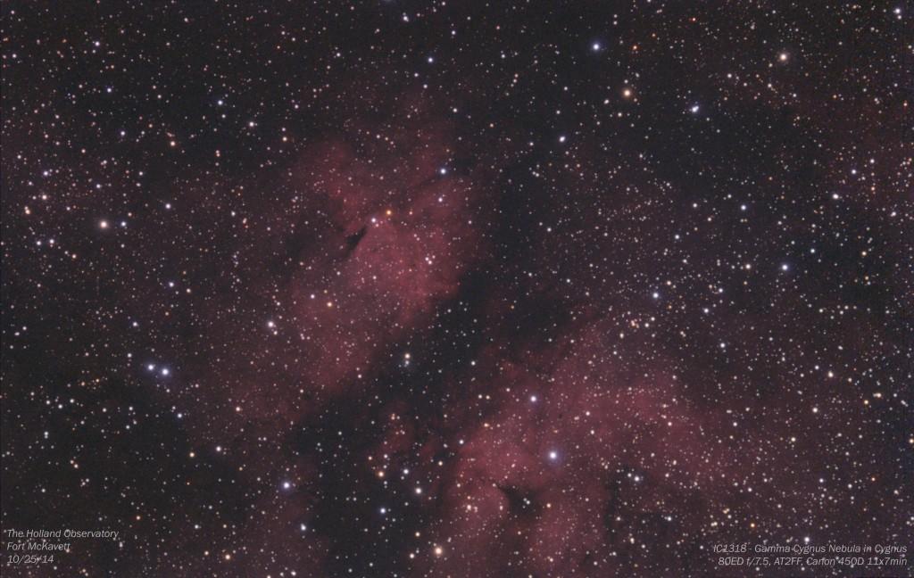 IC1318 - Gamma Cygnus Nebula in Cygnus