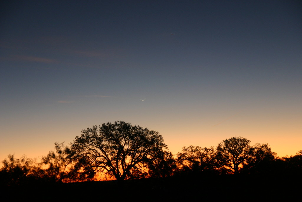 The Moon and Venus - 17 to 70mm Sigma Lens, Canon 300D Camera