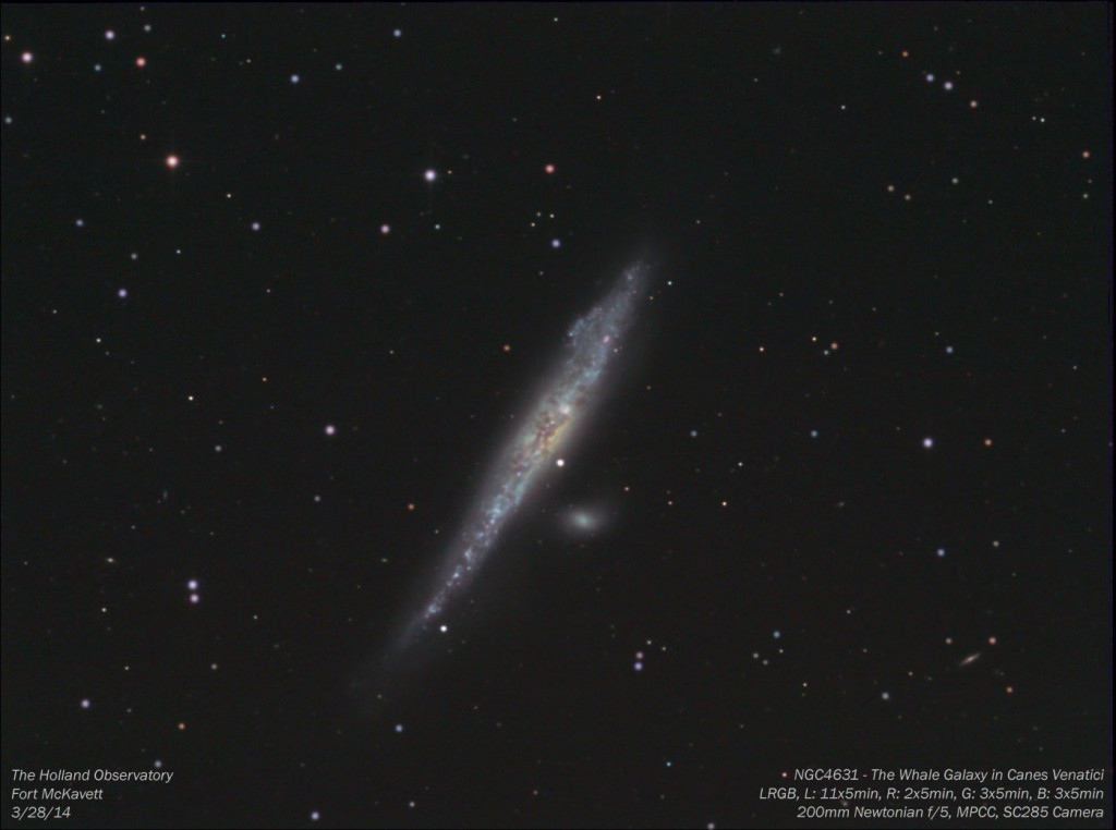NGC4631 - Whale Galaxy in Canes Venatici
